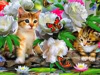 Kleurrijk beeld met katten.
