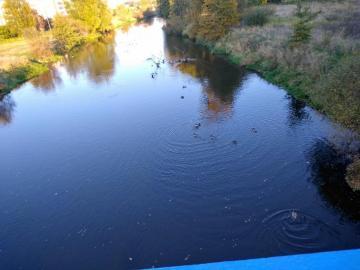 moje jalepsze miejsce na ziemi - rzeka Bóbr w Szprotawie