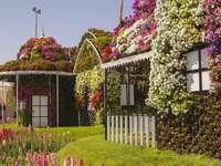 Къщата е пълна с цветя. - Къщата е пълна с цветя.