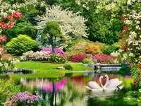 Tavaszi virágok a parkban.