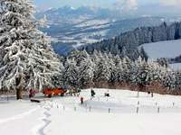 winter in the mountains - Beautiful winter landscape