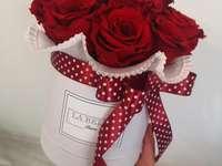 Boeket van eeuwige rozen - Boeket van eeuwige rozen. Ze zijn mooi en gaan lang mee.