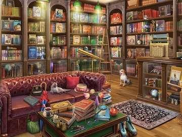 Wnętrze. Biblioteka.