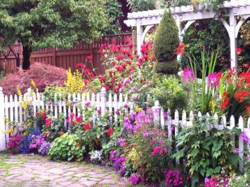 Gartenarrangements. - Blumen. Gartenarrangements.