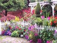 Arrangements de jardin.