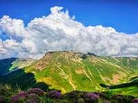 Pârtii verzi de munte - Vedere frumoasă a versanților montani verzi cu flori