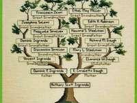 συνάντηση στο Bojan - Δημιουργία εικόνας οικογενειακού δέντρου