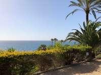 Fuerta - Canarische Eilanden - Fuerta - Canarische Eilanden