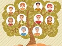 bijeenkomst in Bojan 1 - een stamboom maken