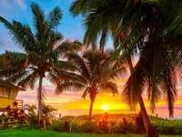 Een fantastisch uitzicht - Ontspanning, bezienswaardigheden, vakantie