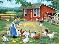 Meisje voederen van kippen. - Een baby die de kippen voedt.