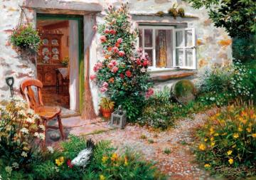 Roses in front of the house - Roses in front of the house, rural picture