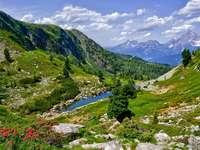 Ett vackert sommarberg - Vackert sommarberg på en solig dag
