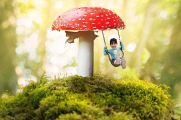 Toadstool and swing. - Toadstool and swing.