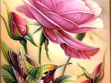 Oiseau coloré et rose. - Oiseau coloré et rose. Oiseau coloré et rose.