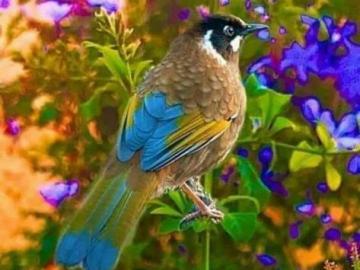 Colorido ptak y flores. - Colorido ptak y flores.