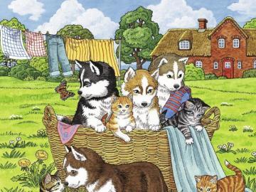 Psy i koty. - Dla dzieci. Psy i koty w koszyku.
