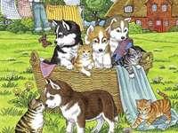 Кучета и котки.
