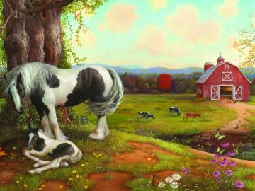 Animals on the farm. - Animals on an American farm. Landscape. On a rural farm. On a rural farm