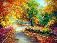 herfstkleuren - herfstbladeren