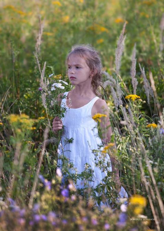 Ein Mädchen zwischen Wiesen