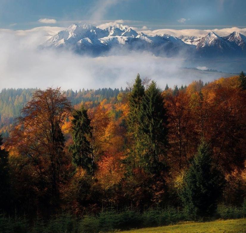 Tatra-gebergte in de herfst - Herfst in het Tatra-gebergte. Gouden herfst in het Tatra-gebergte. Gouden herfst in de bergen (2×3)