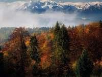 Tatra-gebergte in de herfst