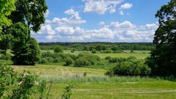 landscape - landscape, green meadows and forests
