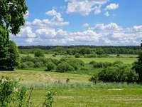 landskap - landskap, gröna ängar och skogar