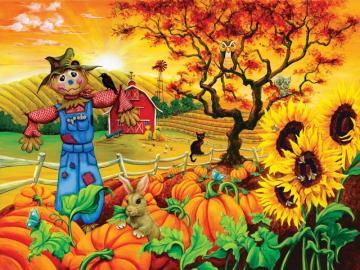 Foto con zucche - Un'immagine colorata con zucche.
