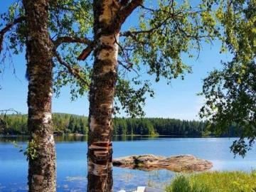 Ricreazione al lago. - Ricreazione al lago.