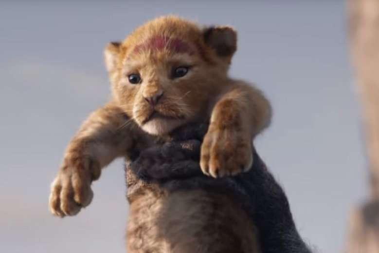 Lejonkungen - Simba - Rama in bilden med hjälten från Lion King - Simba (3×3)