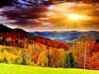 Fantastisch uitzicht, herfstbladeren
