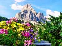 Bajeczny widok - Zwiedzanie , urlop, wypoczynek