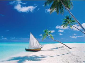 Maldives - Beautiful beaches of Maldives.