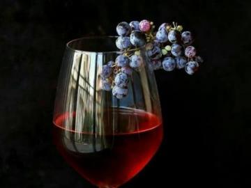 Σταφύλια και ένα ποτήρι κρασί - Σταφύλια και ένα ποτήρι κρασί