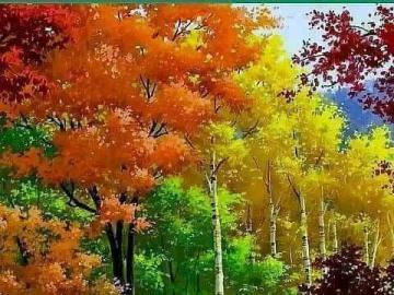 Las i rwący strumyk - Las i rwący strumyk. Liście jesienne, jesienne liście.