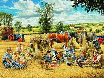 Summer. Harvest. - Landscape. Summer. Harvest.