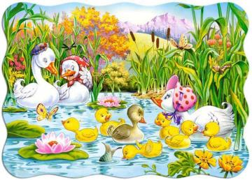 An ugly duckling. - For children. An ugly duckling.