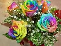 Szivárvány rózsa - Szivárványrózsa - természetes színek