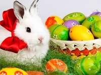 Velikonoční košík - Velikonoční košík, velikonoční vajíčka, velikonoční zajíček