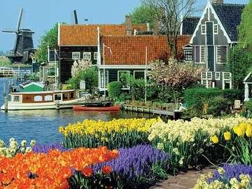 Dutch landscape. - Dutch landscape.