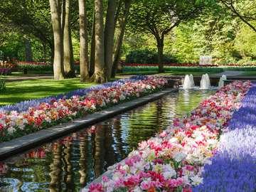Amsterdam park. - Netherlands. Amsterdam park.
