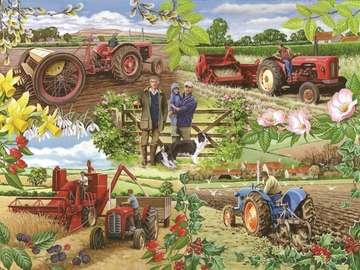 Agricultural landscape. - Rolniczy krajobraz