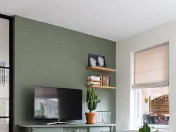 Verde embotellado en la pared - Sala de estar, verde embotellada