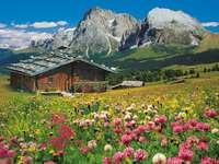 Paisaje tirolés. - Paisaje tirolés con una choza. Europa. Austria. Tirol. Austria. Tirol.
