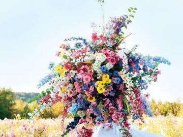 Fleurs sauvages - bouquet - Un bouquet de fleurs sauvages