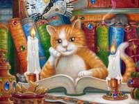 Kitty lezen.