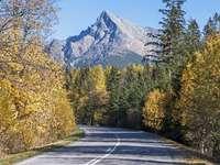 Montagnes en automne. - Paysage de montagne en automne.