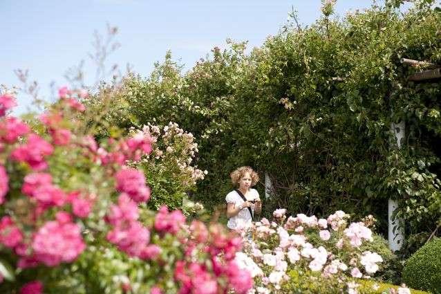 kert Dobrzycában - kislány a kertben Dobrzyca-ban (12×10)